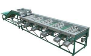 Automatic Garlic Grader Machine