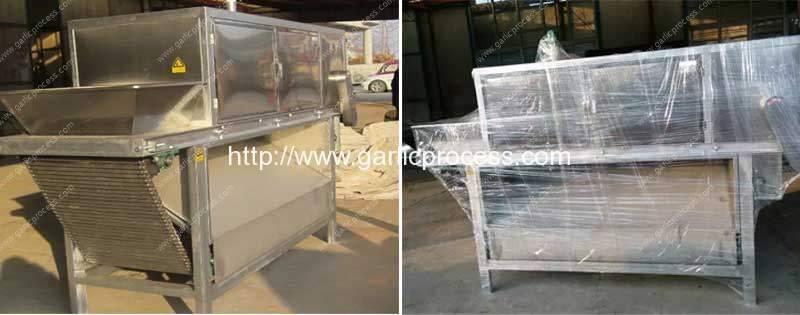 Automatic-Continuous-Garlic-Peeling-Machine-Supplier