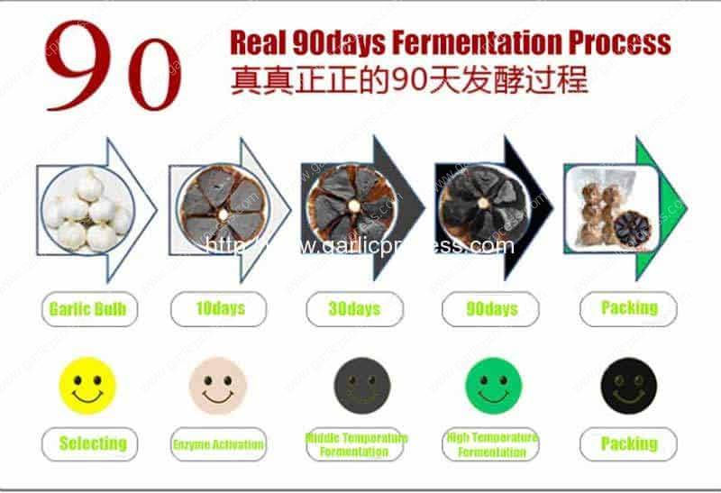 Full-Automatic-Garlic-Fermentation-Process-Drawing-in-90days