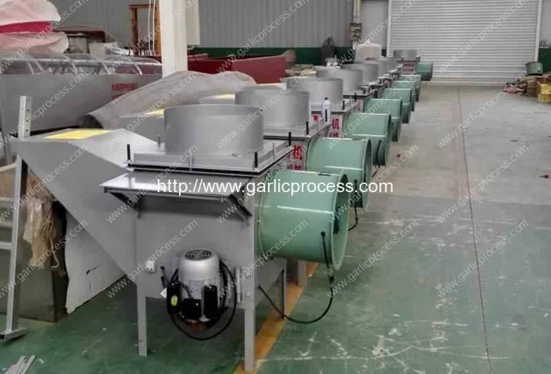 Large-Capacity-Garlic-Clove-Separating-Machine