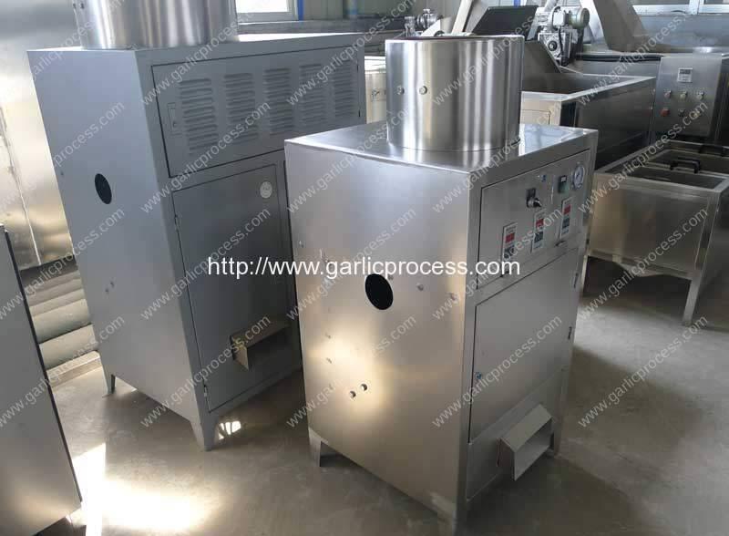 Full Automatic Garlic Peeling Machine for Egypt Customer
