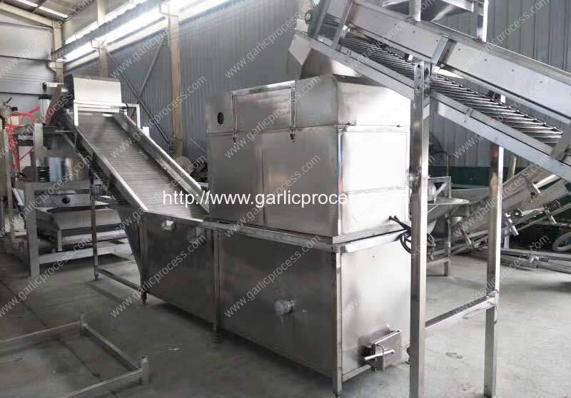 Large-Capacity-4000kg-Per-Hour-Garlic-Slicing-Machine-for-Sale
