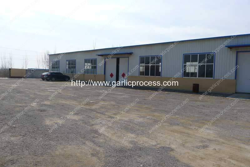 Garlic-Processing-Machine-Manufacture-and-Supplier-Factory-Visit