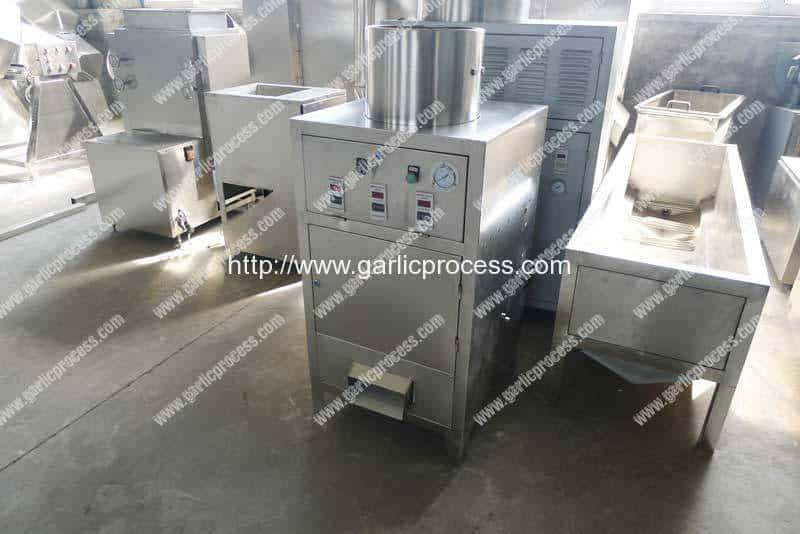 Pneumatic-Garlic-Breaking-and-Peeling-Machine-Manufacture-Factory-Visit