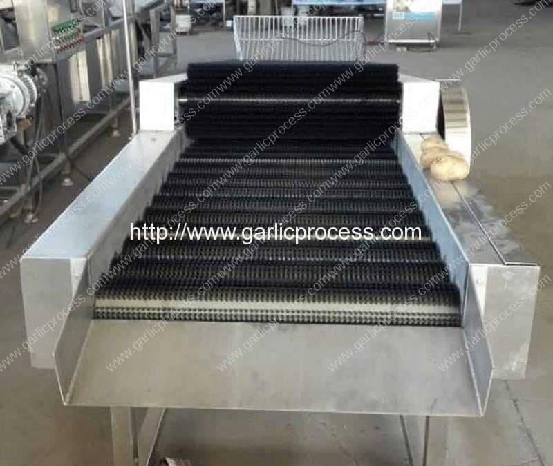 Garlic-Dry-Cleaning-Machine-(1)
