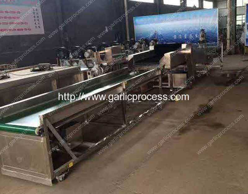 Garlic-Dry-Cleaning-Machine-(3)