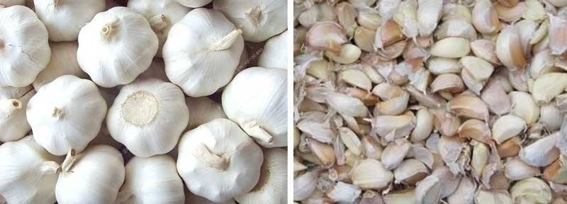 automatic-garlic-clove-separating-machine-for-sale