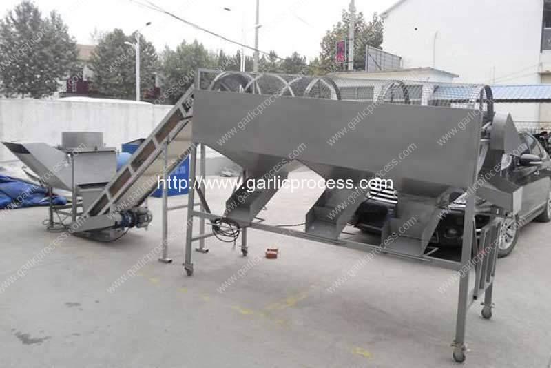 Máquina automática de corte e separação do alho
