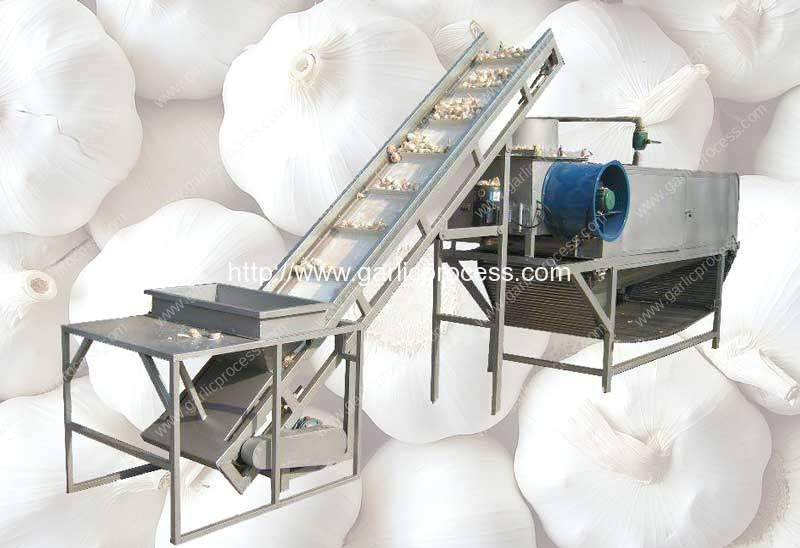 Automatic Garlic Separating and Peeling Machine