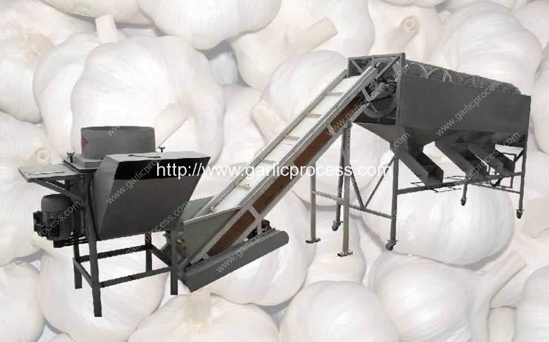 garlic-clove-separating-and-clove-size-grading-machine