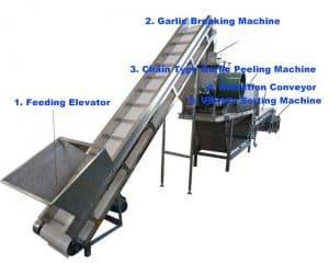 Stainless-Steel-SUS304-Garlic-Clove-Production-Line-for-Sale