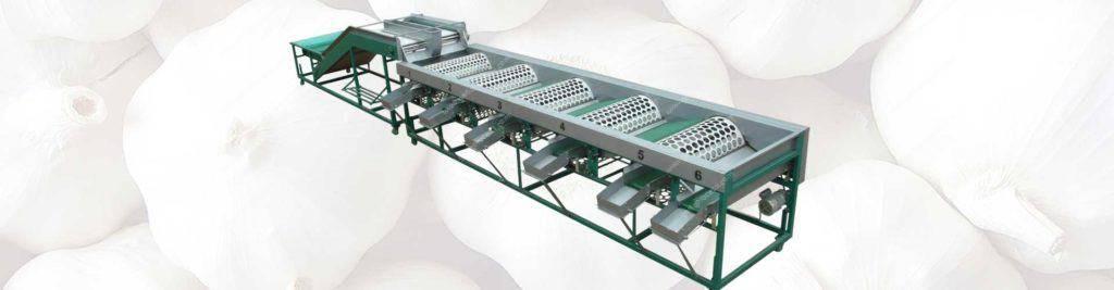 banner3-automatic-garlic-grader-machine