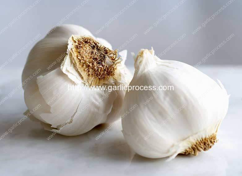 6-ways-to-make-garlic-last-longer