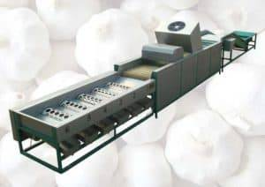 automatic-garlic-dry-cleaning-and-sorting-grading-machine