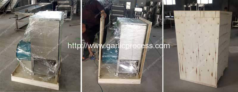 stainless-steel-garlic-peeling-machine-ply-wood-package-for-egypt-customer