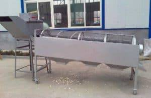 Automatic Garlic Clove Sorting Machine for Seed Clove