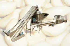 Full-Automatic-Garlic-Clove-Separating-and-Peeling-Line-Manufacture
