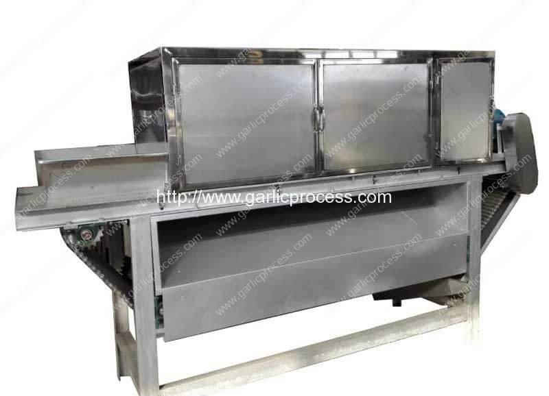 High Capacity Chain Type Garlic Peeling Machine