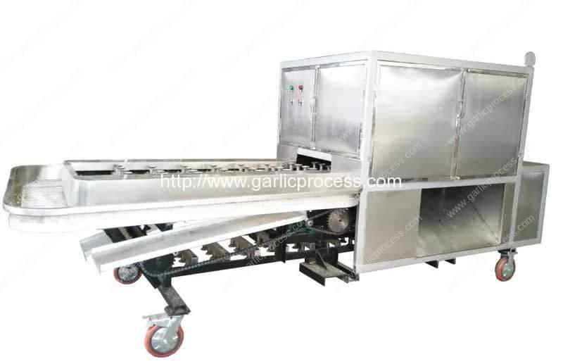 Automatic-Garlic-Tail-Concave-Cutting-Machine-Manufacture