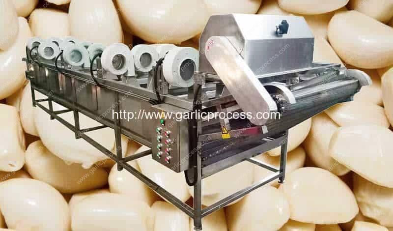Máquina automática do secador do ar do cravo-da-índia de alho
