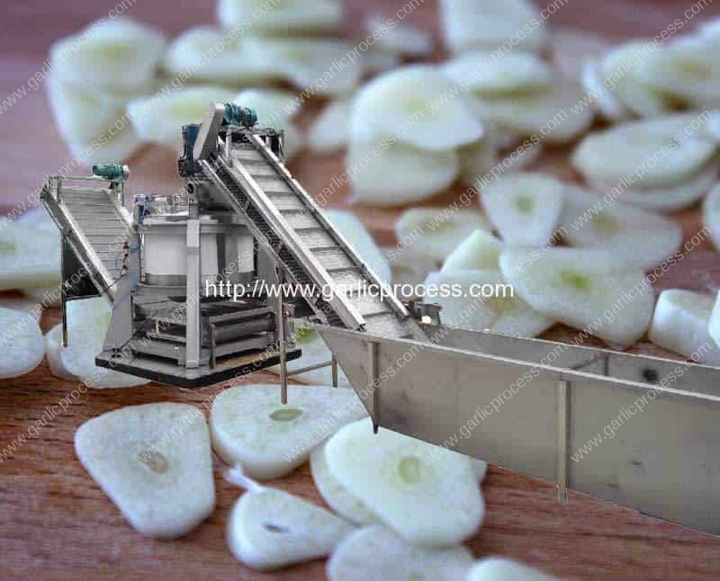 Continuous Feeding Centrifugal Type Sliced Garlic Dehydrate Machine