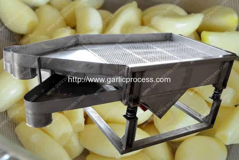 Máquina de triagem vibratória automática de cravo de alho pelado