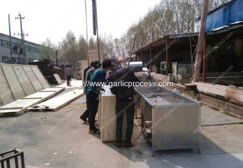 Dehydrated-Garlic-Slice-Production-Line-Plywood-Package-for-Argentina-Customer