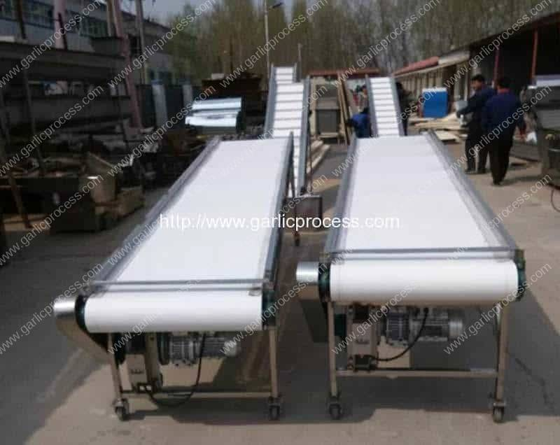 Full-Automatic-Dehydrated-Garlic-Slice-Production-Line-for-Argentina-Customer