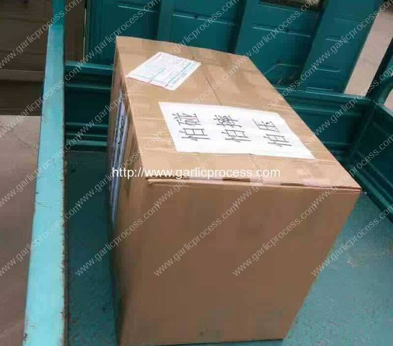 Garlic-Leaf-and-Root-Cutting-Machine-Package-for-Czech-Republic-Customer