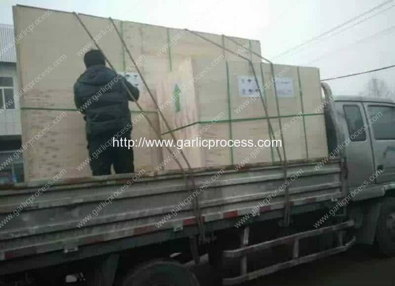 Malaysia-Garlic-Clove-Production-Line-Delivery-Package