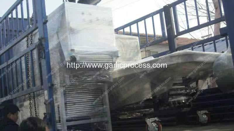 Malaysia-Garlic-Clove-Production-Line-Delivery