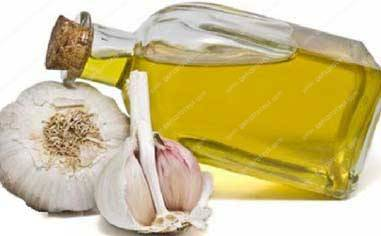 garlic-oil-production-line-in-America