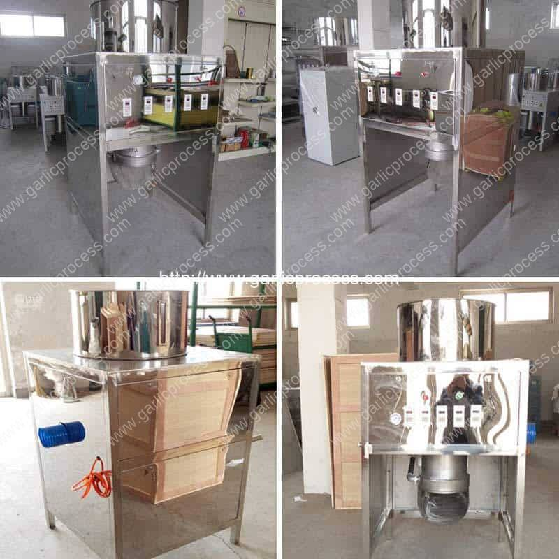 Full Stainless Steel 600KGH Garlic Peeling Machine for Sale