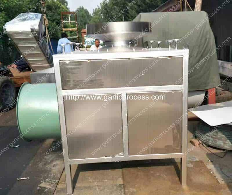 Stainless Steel Large Capacity Garlic Clove Breaking Machine for Sale