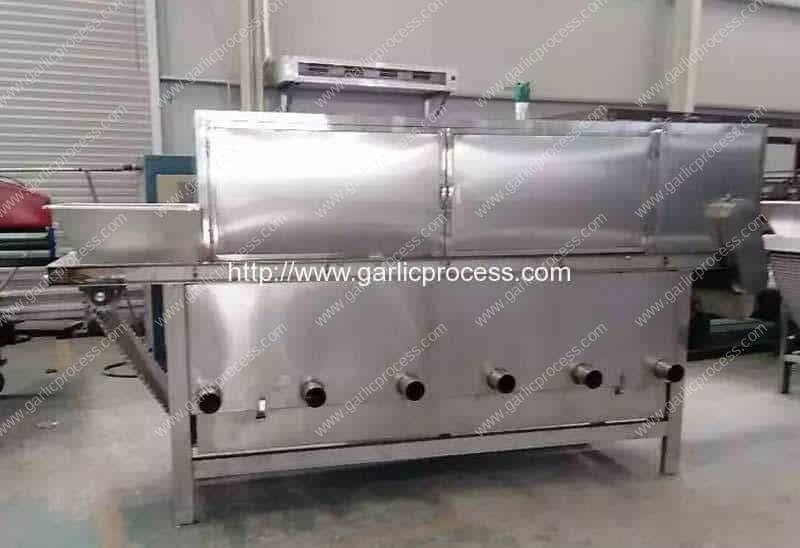 Chain-Type-Garlic-Clove-Peeling-Machine-for-Argentina