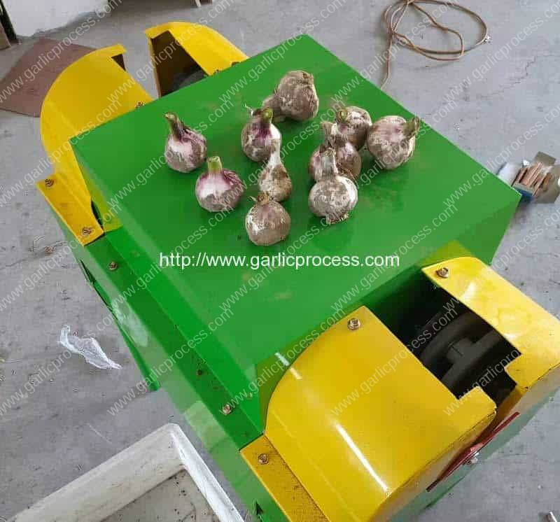 New-Color-Garlic-Sprout-Leave-Cutting-Machine-for-New-Zealand