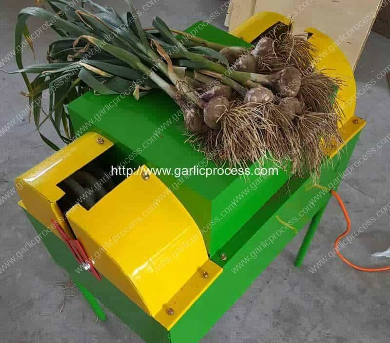New Color Garlic Harvest Sprout Cutting Machine for New Zealand
