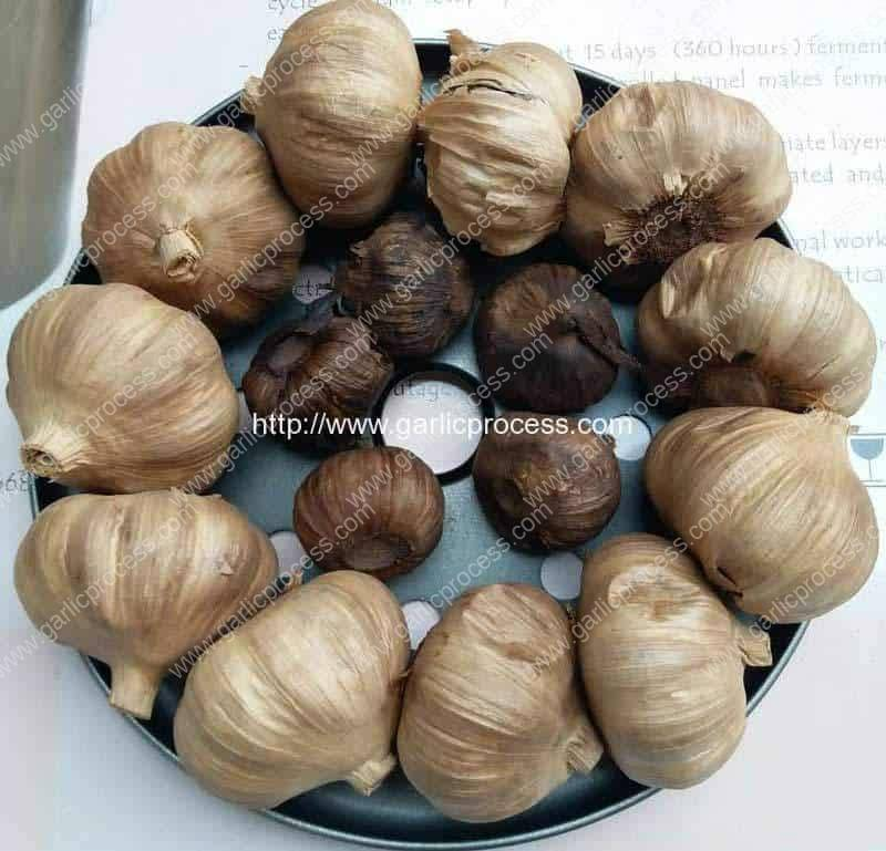 Automatic-Black-Garlic-Fermenting-Machine-for-Sale