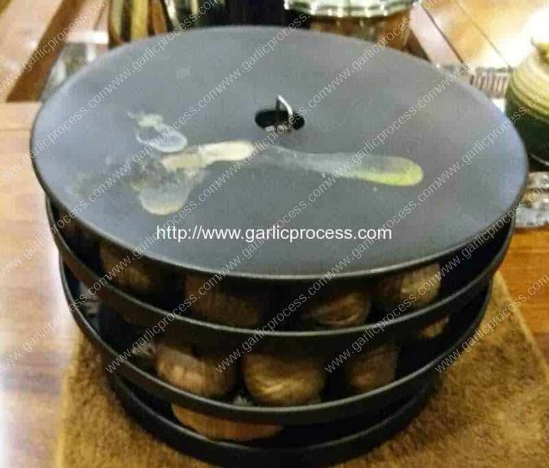 Automatic-Black-Garlic-Machine-Internal-Structure