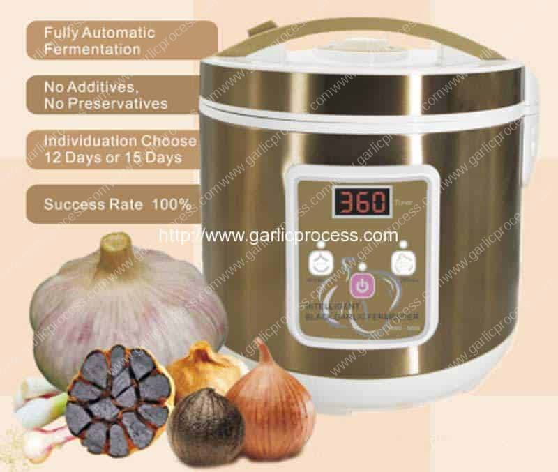 Domestic-Type-Black-Garlic-Fermentation-Machine-for-Sale