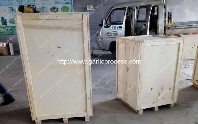 Romiter-Garlic-Separating-Peeling-and-Paste-Making-Machine-for-Poland-Customer-Delivery