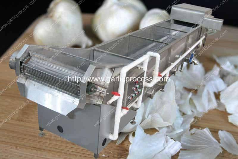 Garlic-Peel-Water-Floating-Removing-Machine-for-SALE