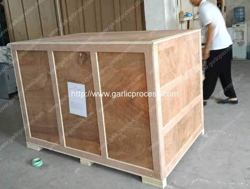 Pneumatic-800kgh-Garlic-Peeling-Machine-Delivery-for-India