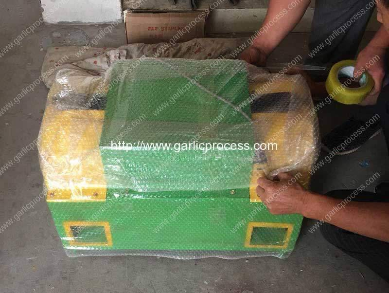 Double-Inlet-Garlic-Root-and-Leaf-Cutting-Machine-for-USA-Customer