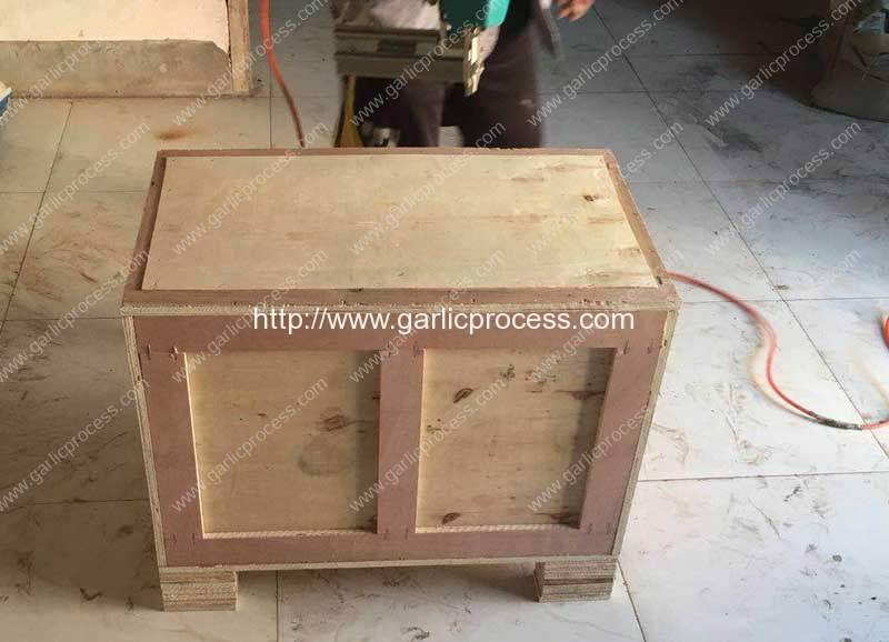 Solvania-Garlic-Root-Stem-Cutting-Machine-Plywood-Package