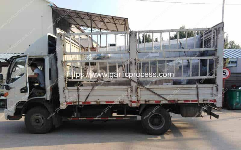 Automatic-Garlic-Seeds-Separating-and-Sorting-Line-for-Canada-Customer