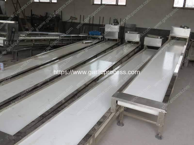 Manual-Selection-Conveyor-for-Food-Processing-Line
