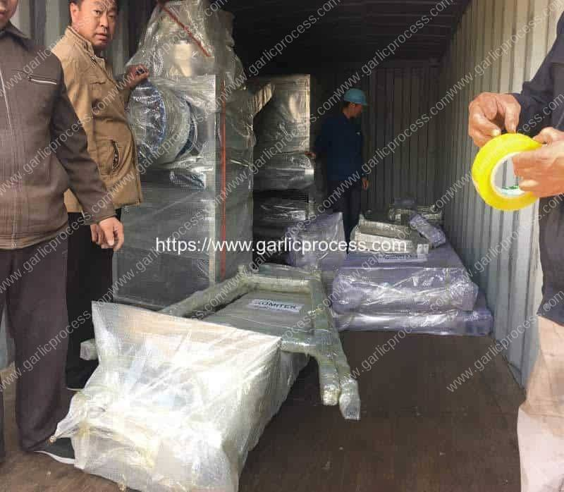 Automatic-Garlic-Clove-Production-Line-Delivery-in-Container