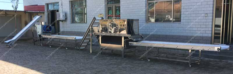 Garlic-Clove-Production-Line-Ready-For-Delivery