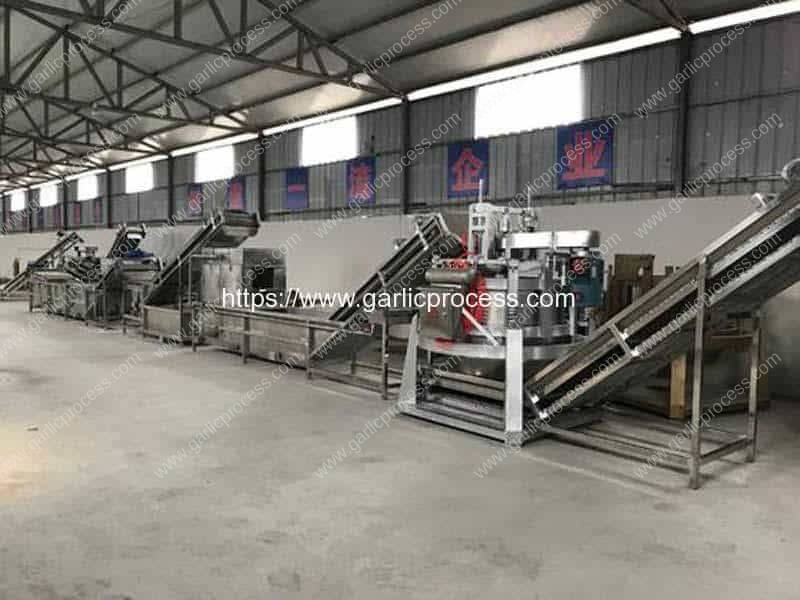 Full-Automatic-Water-Type-Dehydrated-Garlic-Slice-Production-Line